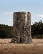 NATURE BLINDS Big Oak Wildlife Feeder - field view