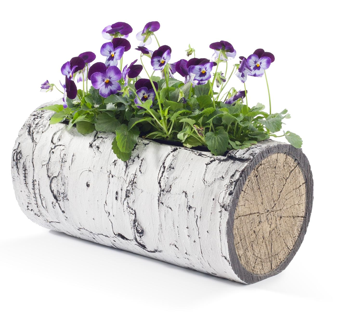"SURREAL 11"" Horizontal Birch Planter 1"
