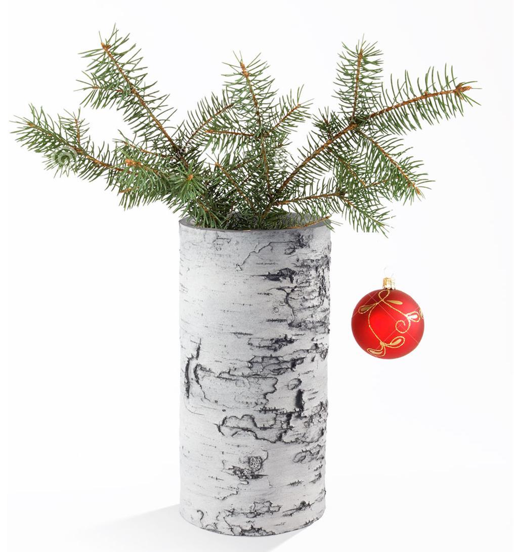 "SURREAL 12"" Birch Vase - Christmas"