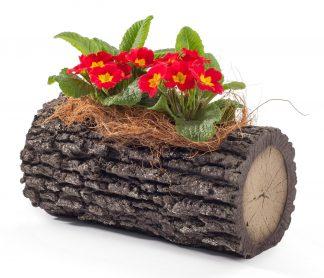 """SURREAL 11"""" Horizontal Oak Planter 1"""