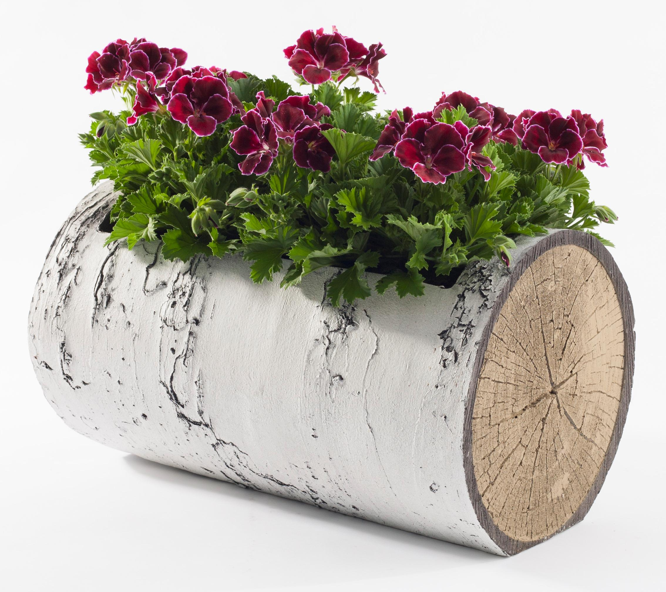 "SURREAL 16.5"" Horizontal Birch Planter"
