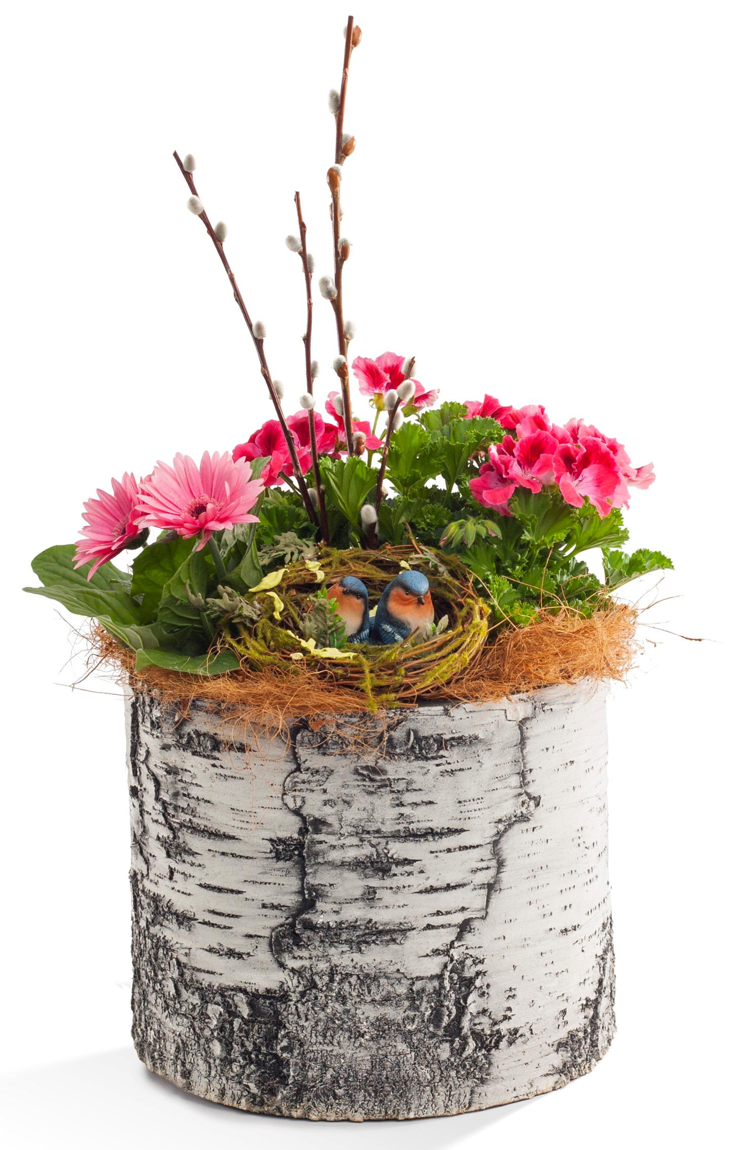 "SURREAL 13"" Vertical Birch Planter"