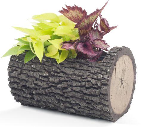"""SURREAL 16.5"""" Horizontal Oak Planter"""