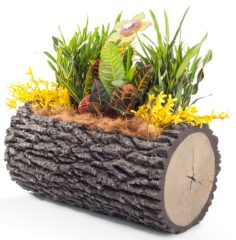 "SURREAL 23"" Horizontal Oak Planter"